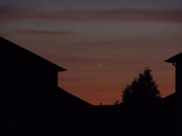 Venus, visible in the west after sunset. Photo: Ranjan Mukherjee