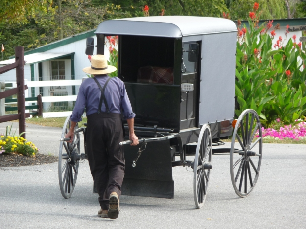 Amish man moving a buggy. Photo: Ranjan Mukherjee