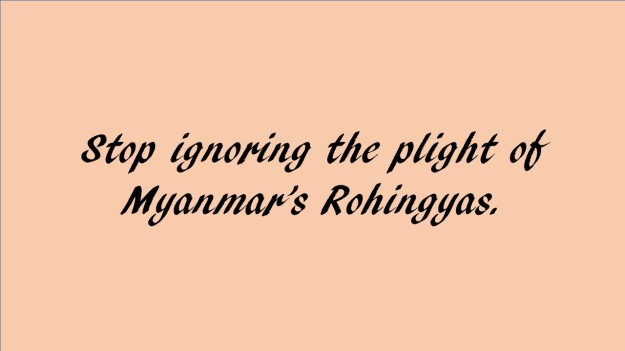 Stop ignoring plight of Myanmar's Rohingyas