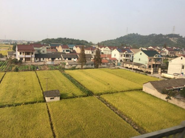 View from the train in China