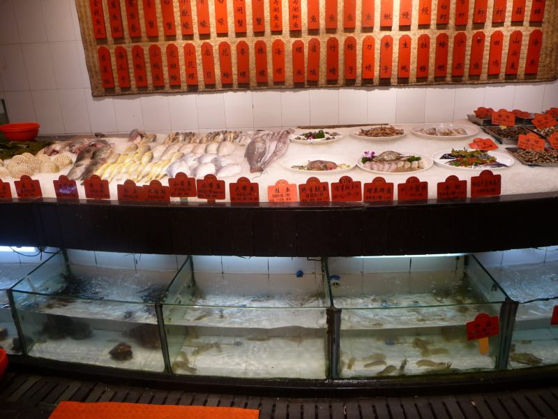 Sea food and live fish in tanks, Wenzhou