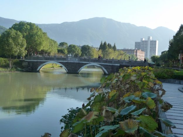 Marie Curie Bridge and lotus plants, WMU, China
